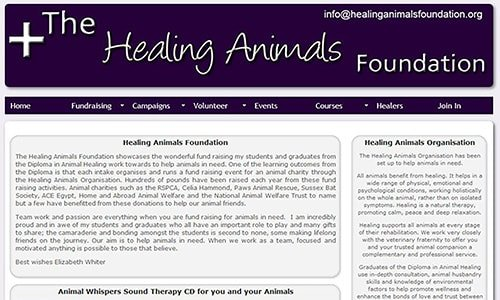 Healing Animals Foundation